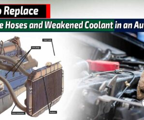 How to Replace Defective Hoses and Weakened Coolant in an Automobile