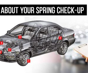 Learn About Your Spring Check-up