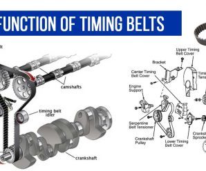 The Function of Timing Belts
